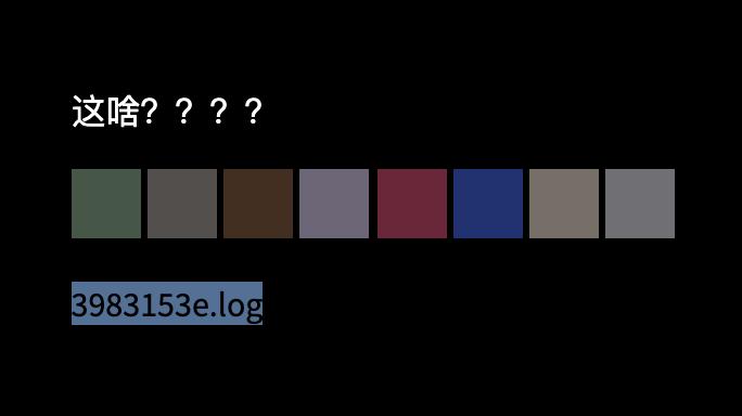 黑色背景,白色文字,「这啥???」 下面有八个彩色方块。 最后一行反白,写着「3983153e.log」。